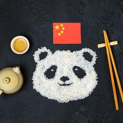 curso cultura china